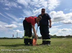 Norddeicher Feuerwehrtage, Aufbau